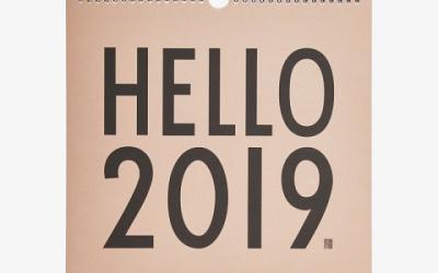 Het nieuwe jaar 2019 is gestart